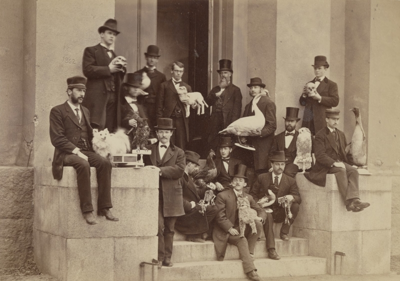 J.W.P. Jenks and his taxidermy students at Brown University, 1875. (John Hay Library and Brown University Archives)